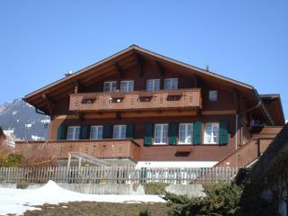 2 Zimmerwohnung, Grindelwald