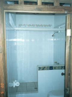 Large shower with hand painted tiles.