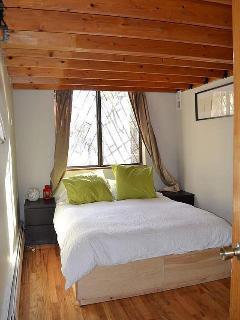 Bedroom #2. Queen size bed, Closet, dresser.