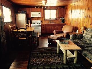 Schott-Away Log Cabin with Lake views and access., Houghton Lake