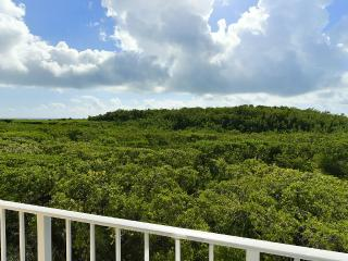 Stunning Ocean Front and Mangrove Views