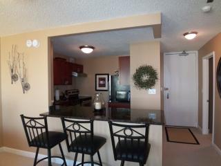 Lovely 1 Bedroom 1 Bathroom Condo in Chicago - Fully Carpeted