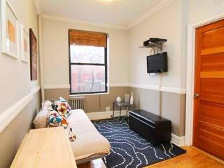 CLEAN AND BEAUTIFULLY FURNISHED 1 BEDROOM, 1 BATHROOM APARTMENT, Nueva York