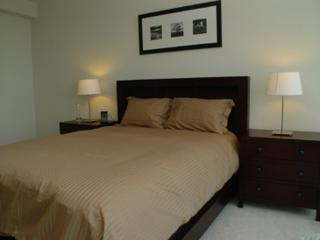 STUNNING 1 BEDROOM 1 BATHROOM FURNISHED APARTMENT, Jersey City