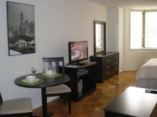 East 52nd Street Furnished Studio Apt, Nueva York