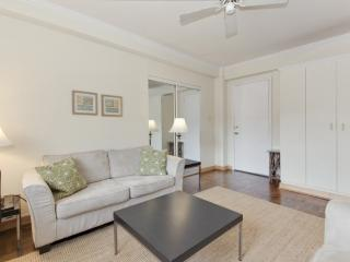 COZY AND BEAUTIFULLY FURNISHED STUDIO CONDO, Washington DC