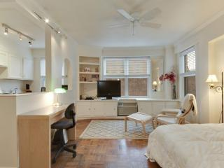 Clean and Charming Studio Condo in DC - Shared Roof Deck with Views, Washington DC