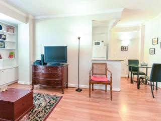 SPACIOUS AND FURNISHED STUDIO CONDO IN WASHINGTON, Washington DC