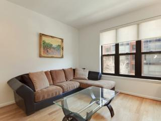 Bright and Modern 1 Bedroom Condo -  Perfectly Located for Urban Dweller, Washington DC