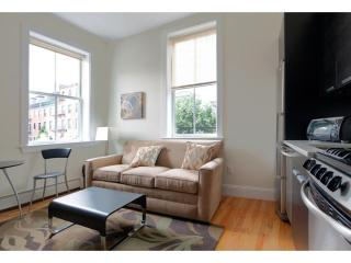 LOVELY, CLEAN AND COZY 1 BEDROOM, 1 BATHROOM APARTMENT, Boston