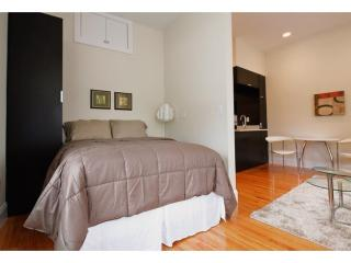 SPACIOUS, CLEAN AND LIGHT-FILLED STUDIO APARTMENT, Boston
