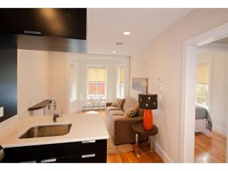 STUNNING AND SPACIOUS 1 BEDROOM, 1 BATHROOM APARTMENT, Boston