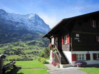Holiday Apartment Chalet Aiiny, Grindelwald