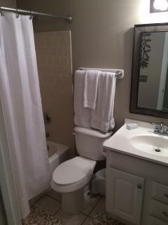Full, private master bathroom