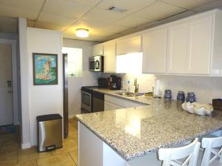 Seaside Pearl  Newly Remodeled.   OCEAN VIEW  2/2, Port Aransas