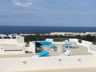 Jim's Pine Valley Penthouse Apartment, Ayios Amvrosios