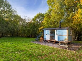 Clavertye Woodland Hut, Elham