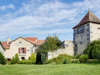 LARGE CHARACTER FARMHOUSE WITH  FAB POOL & GARDEN, Verteillac