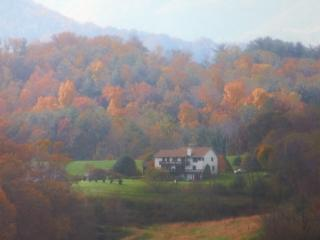 ~Brittany's Mountain Retreat~ near Asheville, NC