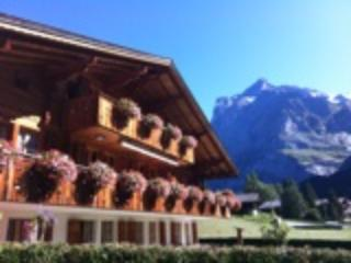 Our house in Grindelwald (middle of the town)
