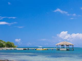 The Starfish - 300' From Beach - Sleeps 4, Roatan