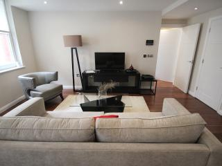 Chancery Lane 1 Bedroom Apartment
