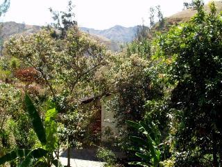 Cabanas Rio Yambala - The Hummingbird Suite, Vilcabamba