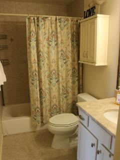 Spa-like bathroom for relaxing.