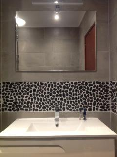 Wet room with toilet shower and sink