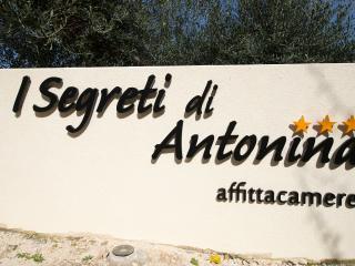 I Segreti di Antonina, Castelluzzo