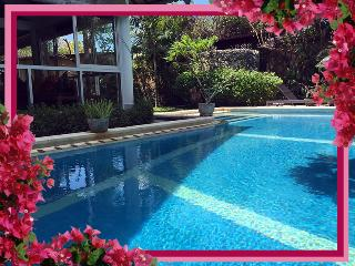The Zoo - Fully enclosed pool-safe,3 bd/bth AC villa/pool WIFI Seminyak