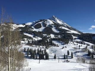 Buttes Condo - Ski in/out. Mountain Luxury.