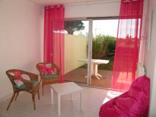 Studio 36 m2 avec terrasse et jardin plage a 50 m