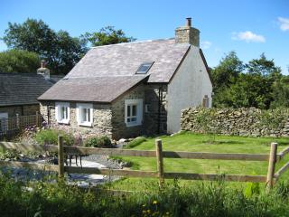 Hen Ffermdy, Banceithin Farm and Holiday Cottages