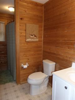 Upstairs master bathroom features tub/shower combination