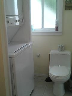 downstairs bath with laundry and stand in shower