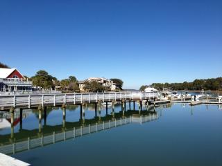 Sea Pines Central Location! - Walk to Beach/Golf- Private Pool- GOLF VIEW!