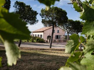 Independent villa in a best part of Tuscany