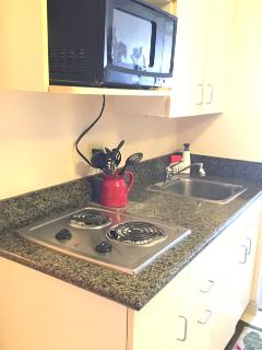 Granite countertops , built in electric cooktop, new stainless microwave.