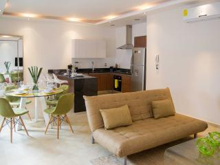 LOVELY NEW 1 BDR Condo Perfect For Couples in Downtown!, Playa del Carmen