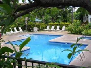 $175 per night - Summer and Fall Special