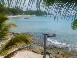 Nannhi West Mullins Bay. . .Beach Front