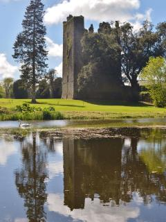 Castlemartyr Resort is only a 10 minute drive away with championship golf courses and restaurants