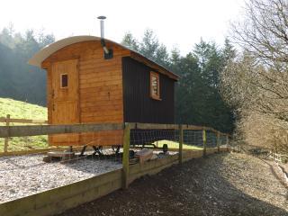 Shepherds Hut at Tyn-fron , North Wales, Bala