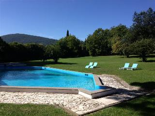 Villa with private Pool and Park with Ancient Ruins! Ideal for Families & Groups, 30km to Rome, Tivoli