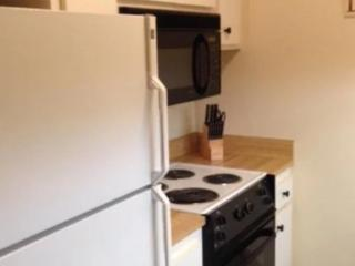 Beautifully Furnished 2 Bedroom Apartment, Menlo Park