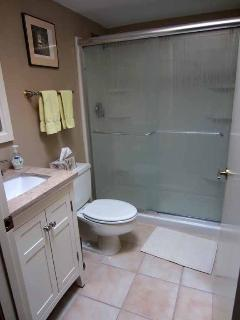 Guest Bath with walk in shower.