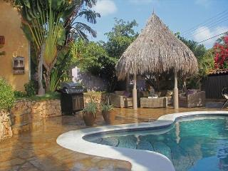 Stunning Mexican Style Villa, Pool Swim-up Bar, Jacuzzi, Gym SPECIAL OFFER!