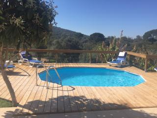 Country villa and pool near Loule