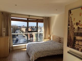 Skyfall - Luxurious Dublin City Penthouse - Private roof terrace - Sleeps 5, Dublín